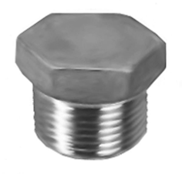 SS200 Hexagon Head Blanking Plug Stainless Steel Pipe Fitting